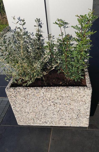 fioriera rettangolare 60x35 ghiaia di fiume, cod. 01FR60x35F, località: Follonica (Grosseto)