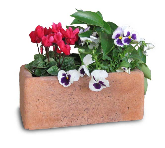Vaso rettangolare 30 vasi e fioriere r c di rinaldi for Vaso rettangolare