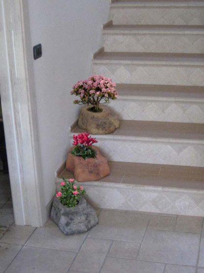 vasi rocciosi 1 spazio, località: Badia Polesine (Rovigo)