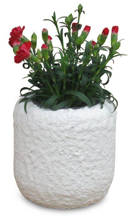 Vaso cilindro col. bianco